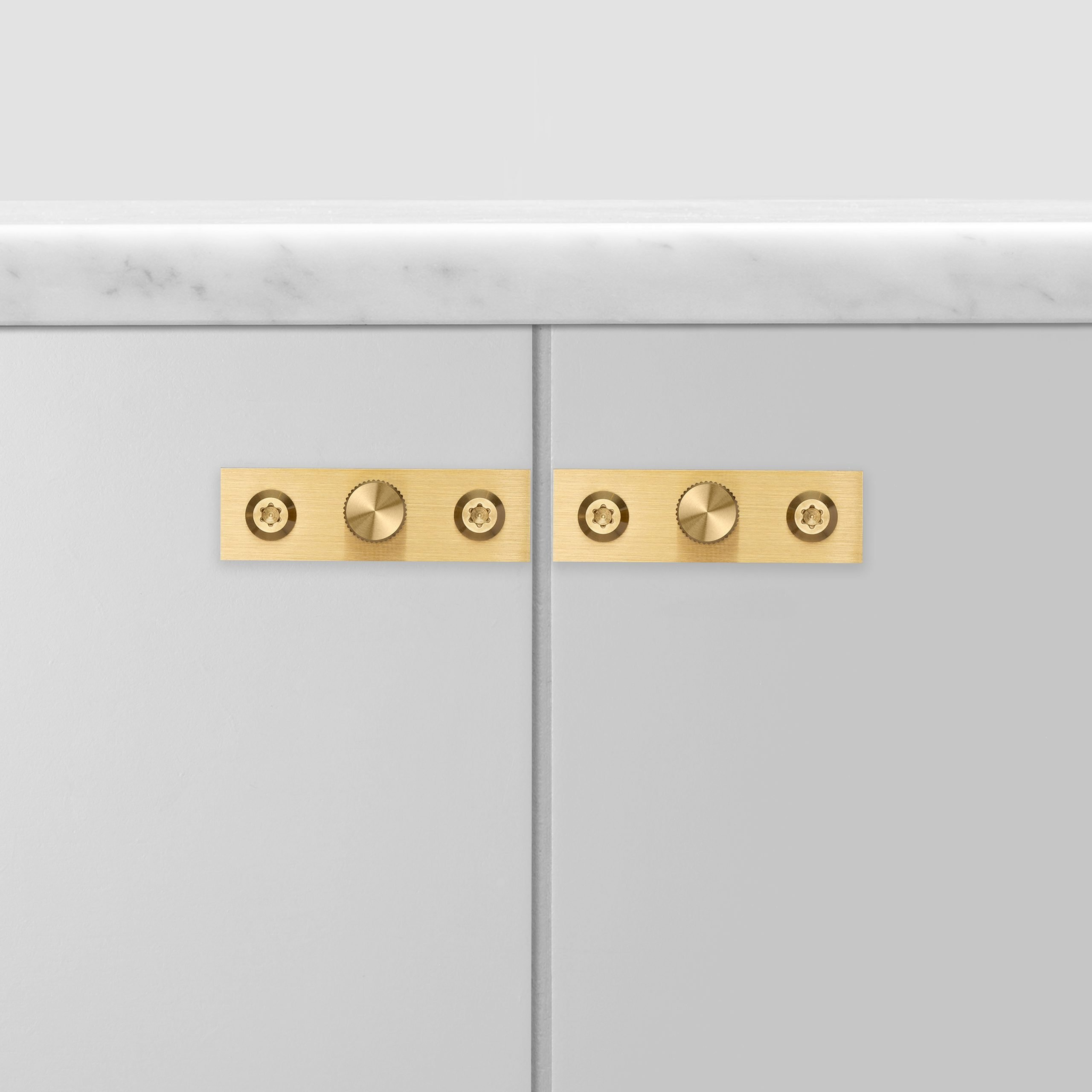 2.Buster+Punch_Furniture_Knob_Plate_Brass